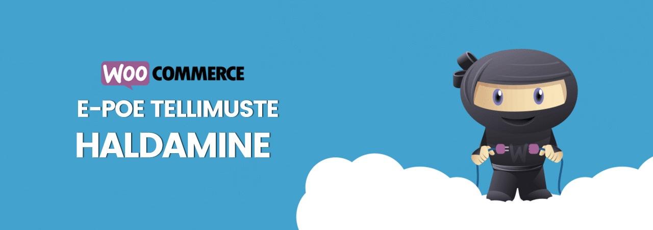 Woocommerce e-poe tellimuste haldamine